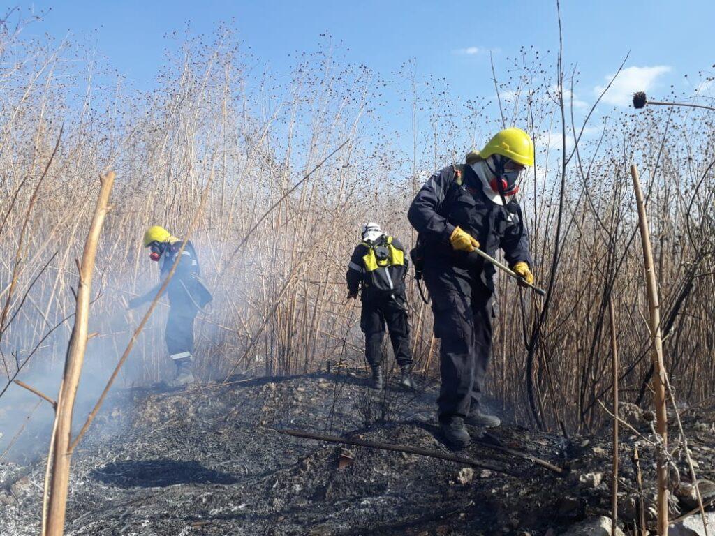 Incendios: la Municipalidad insiste en las precauciones